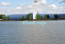 """♥Disney Resorts♥ / Here you will find all of the resorts around """"The World"""" / by Dulcie Hayes"""
