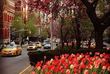 Spring in the City! / Warmer temps, pops of color and gorgeous flowers. We're loving spring in the city!  / by Isaac Mizrahi