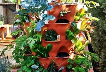 Vertical Gardening / Best and unique Vertical Gardening ideas, systems and kits for all types of vegetables, flowers and plants. Get inspired with our vertical gardening ideas. - http://plantedwell.com/vertical-gardening/
