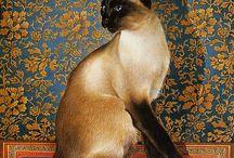 Lesley Ann Ivory cat