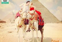 """Egypt Day Tours / """"Trips In Egypt"""" Offers a wide variety of Egypt day tours from all Egypt cities. Explore Cairo attractions and Giza pyramids, tour to Luxor highlights, enjoy Aswan beauty and its landmarks, explore Cairo and Luxor sights from Hurghada, El Gouna, Marsa Alam and Sharm.  All our Egypt day tours are private guided tours so we can customize it according to your needs."""