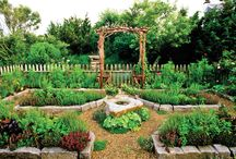 """In my-garden-to-be / The garden of my dreams before the reality becomes my nightmare.   Hoping to discover Grandma's recessive """"green thumb gene"""" buried somewhere inside of me. / by Cheryl Latsch"""