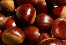 Marron, brun / Le marron nous fait penser à la nature puisque c'est la couleur de la terre, du tronc des arbres, des feuilles en automnes mais c'est aussi la couleur des fourrures de certains animaux. C'est pourquoi d'ailleurs la couleur marron représente la douceur, le naturel, l'assurance, le rustique, la sérénité, le confort, la solidité, stabilité, calme et chaleur.