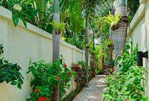 Bali tropical ideas for our backyard. / Collecting ideas for a tropical paradise in our backyard.