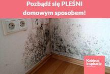 czysty dom