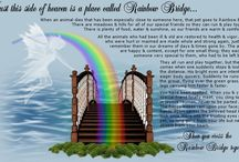 Rainbow Bridge / Where all the furbabies go when they cross over to the other side.