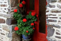 Doors, windows! / A small key opens big doors!    Every window tells a story!
