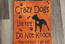 看板 dogs