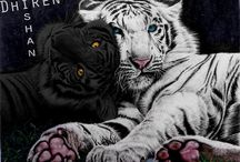 Colleen Houck: Tigers curse