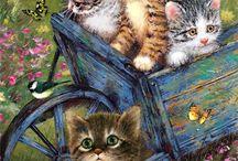 pisicikler2