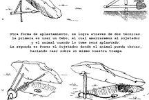 fale 13