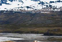 Iceland!!