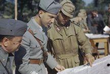 20TH -WW2-REGIO ARMY ITALIAN