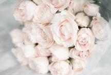 Flowers / by Roshelle Lowe