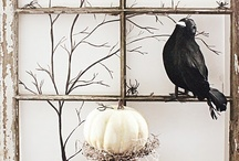 Decorations / by Tina Parker