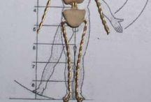 Человек мк, лепка, анатомия