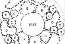 Wokół drzewa