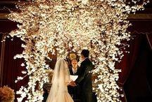 Wedding fever