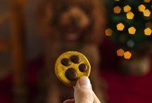galletas perro