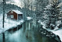 Nature - Winter Wonderland