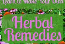 healing power of herbs