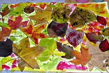 Leaves for Kids / Fun fall leaves activities for kids in your classroom or home. Explore leaves using science, art, language, and math! Fun fall activities for kids.