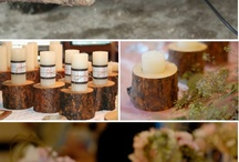 Outdoor wedding / by Nicole Lloyd