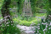 gardening and landscape
