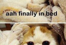 Kitty;)