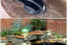 pond ideas / by Liz Hickling
