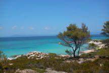 Narancspart / Orange Beach / A Narancspart a legnépszerűbb természeti látnivaló Sarti környékén, kb. 10 km-re a falutól. Nevét mindössze annak köszönheti, amiért a környék strandjait is gyümölcsökről nevezték el. Így lehetséges, hogy Sarti környékén megtalálható még a Banánpart, a Körte part, a Füge part, stb. A Narancspart a türkizkék színű tenger és a hófehér kavicsos tengerpart kettőse, ami karibi hangulatot ébreszt az oda látogatókban. A parti sziklákban továbbá egy helyi szobrász alkotásai is megfigyelhetők...