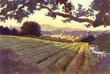 Illustrated Vineyards