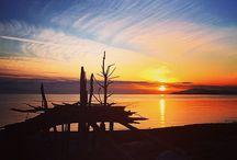 Sunshine Coast, BC / Everything coastal on BC's Sunshine Coast-Events, travel , recreation, beaches, wildlife, people, art, culture - shared by YOU .
