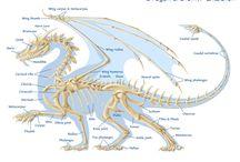 savoir en Dragons