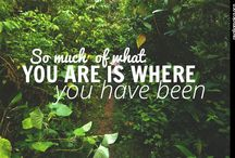Quotes / Real Jamaica quotes