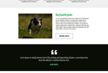 animals and pets landing page design