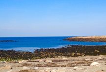 Loblolly Cove Rockport