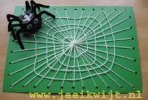 Spinnen knutselen