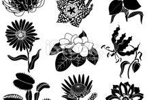 stilasi flora
