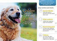 Veterinary team & client education / by dvm360.com
