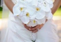 Orchid Bouquets