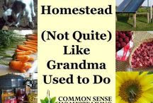 ~HOMESTEADING~ / Group board for anything homesteading, self-sufficient living, farmstead, and gardening. If you would like to join this board please follow me (Pinterest Rule) and message me.