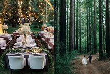 Forest wedding in May
