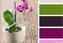 цвета и их сочетания с природой