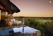 south africa honeymoon / Amazing destinations for your honeymoon in South Africa / by Ever After Honeymoons