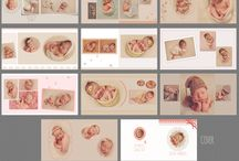 Album Collage Template / Wedding Album Template, Newborn Album Template, Multipurpose Album Template