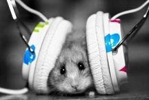 Too Cute! / by Cristina Vega