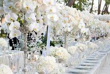 Wedding: Theme/ Ideas