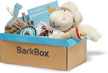 Bark Box & Bark Buddy / Get monthly treats and toys for your pets and take great pictures with an app for your Smart Phone.