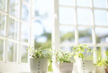 [Garden] : Interior
